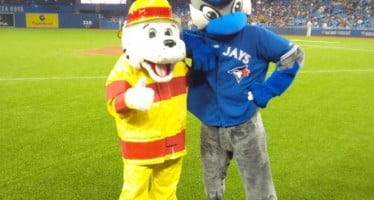 A grand slam day for fire safety in Ontario