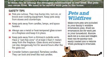 New tip sheet reminds us to take care with pets