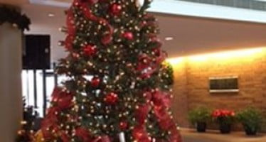 NFPA decorates Christmas tree for safety