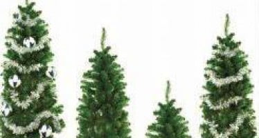 Nearly 40 percent of Christmas tree home fires occur in January; NFPA encourages their removal now